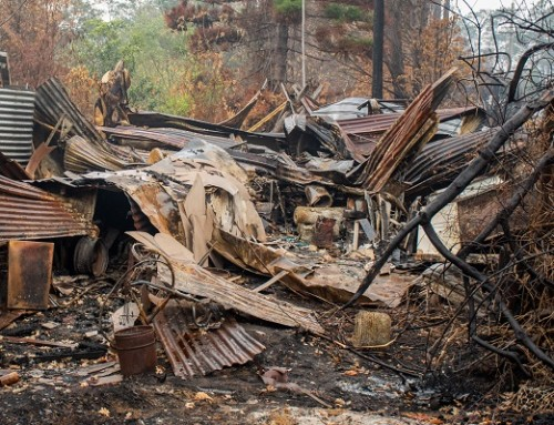 Rebuilding after the Bushfire Crisis
